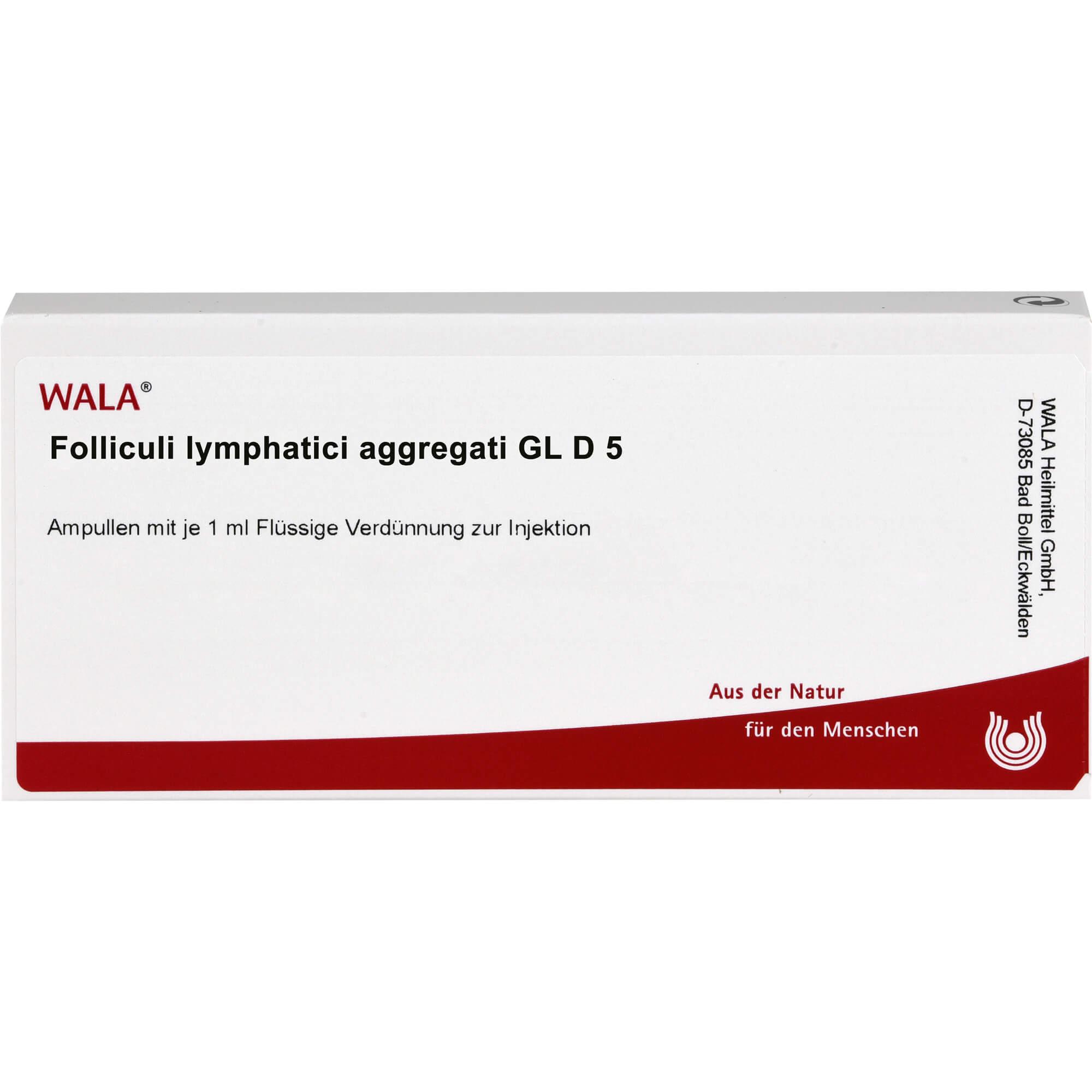 FOLLICULI LYMPHATICI aggregati GL D 5 Ampullen
