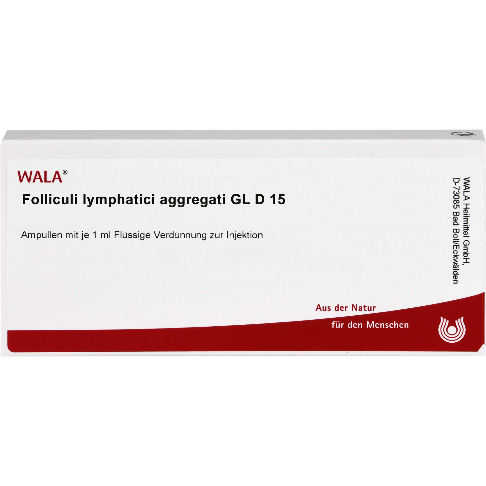 FOLLICULI LYMPHATICI aggregati GL D 15 Ampullen