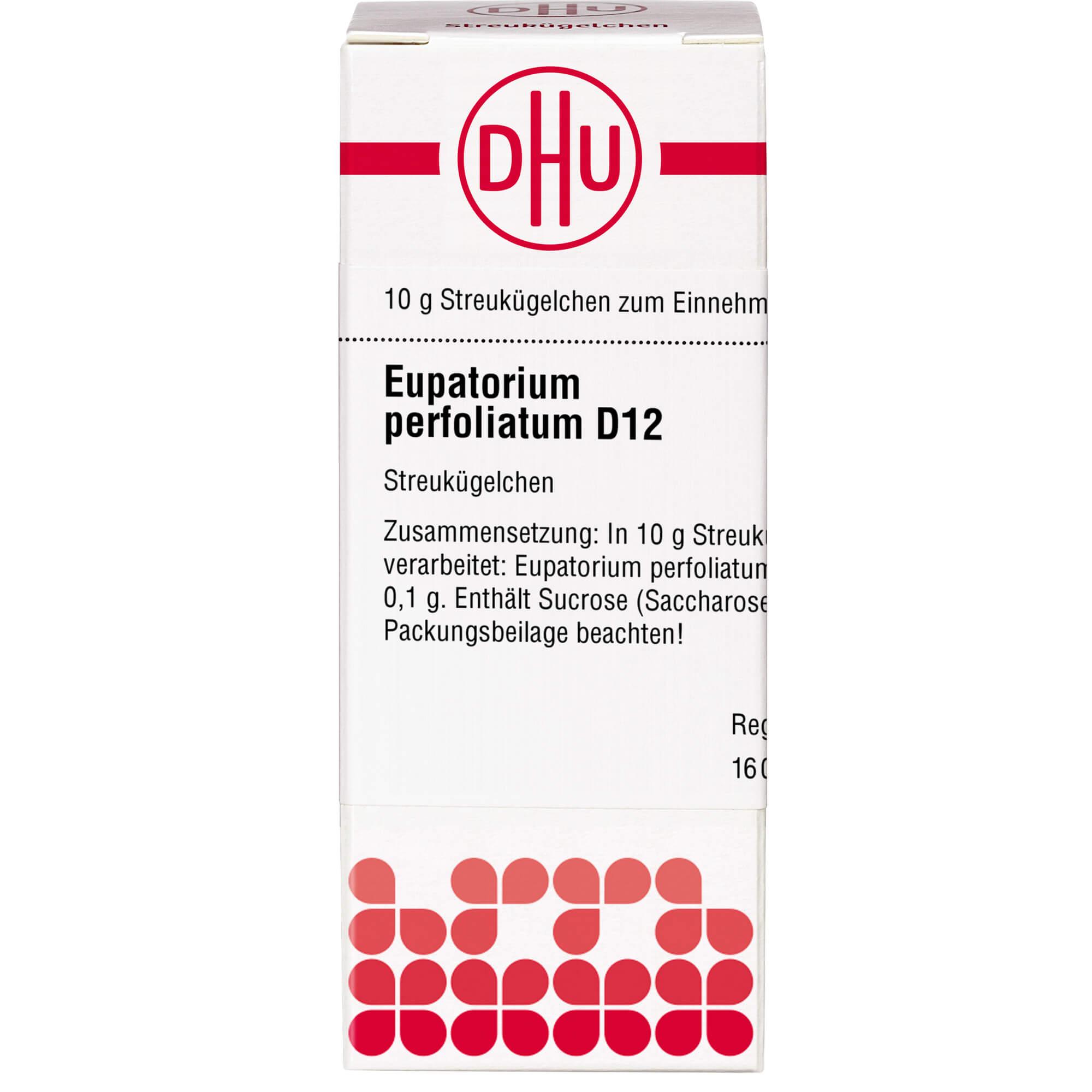 EUPATORIUM PERFOLIATUM D 12 Globuli