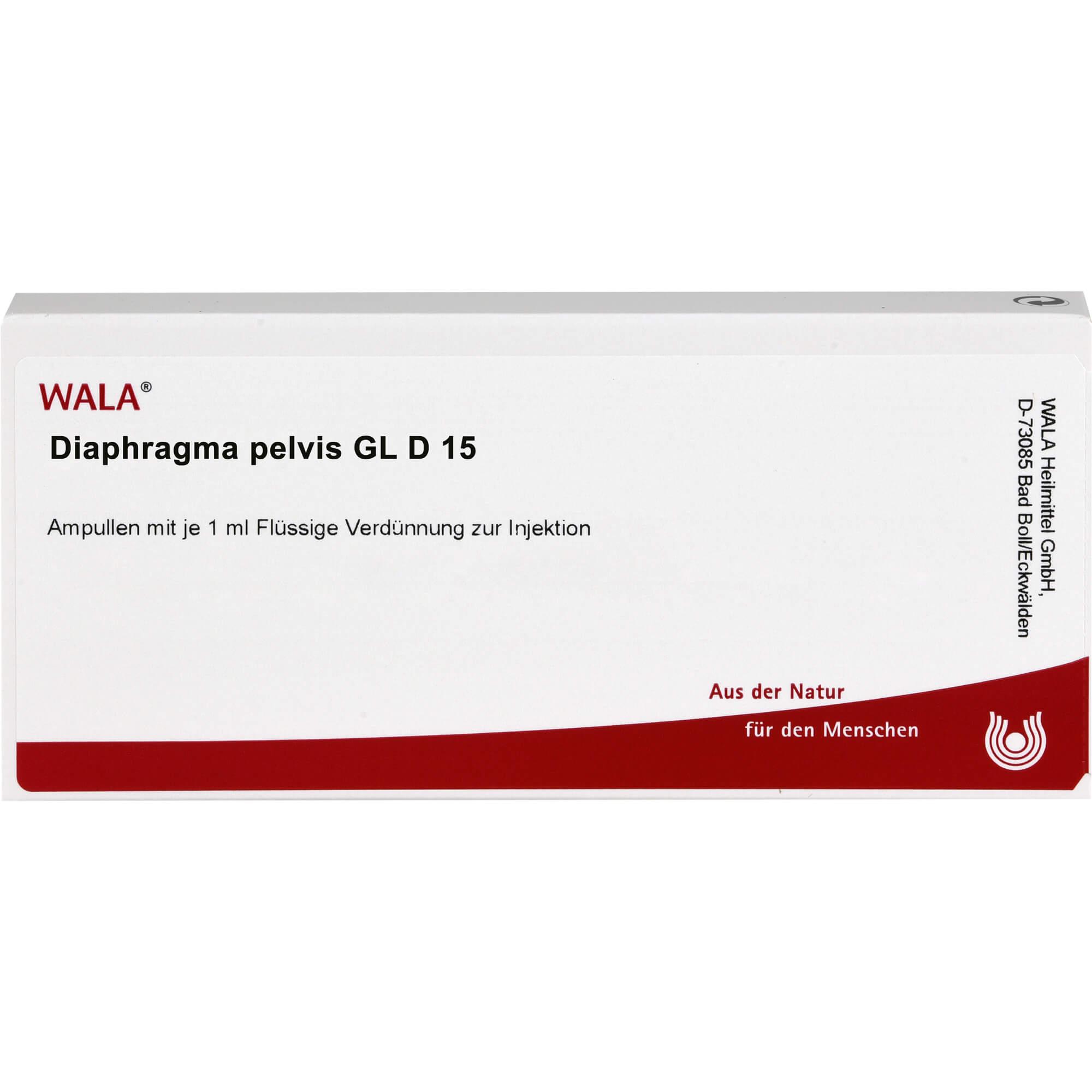 DIAPHRAGMA PELVIS GL D 15 Ampullen