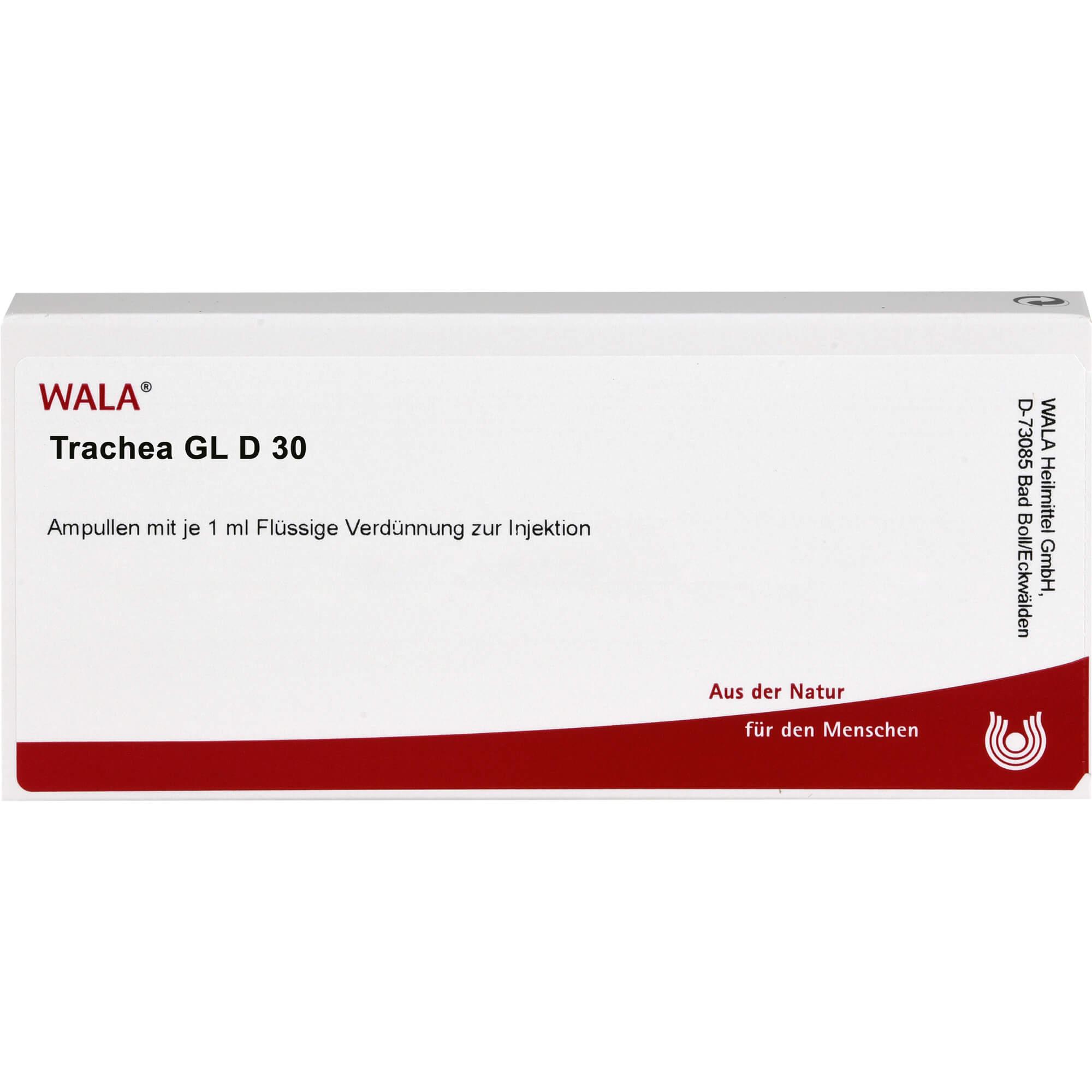 TRACHEA GL D 30 Ampullen