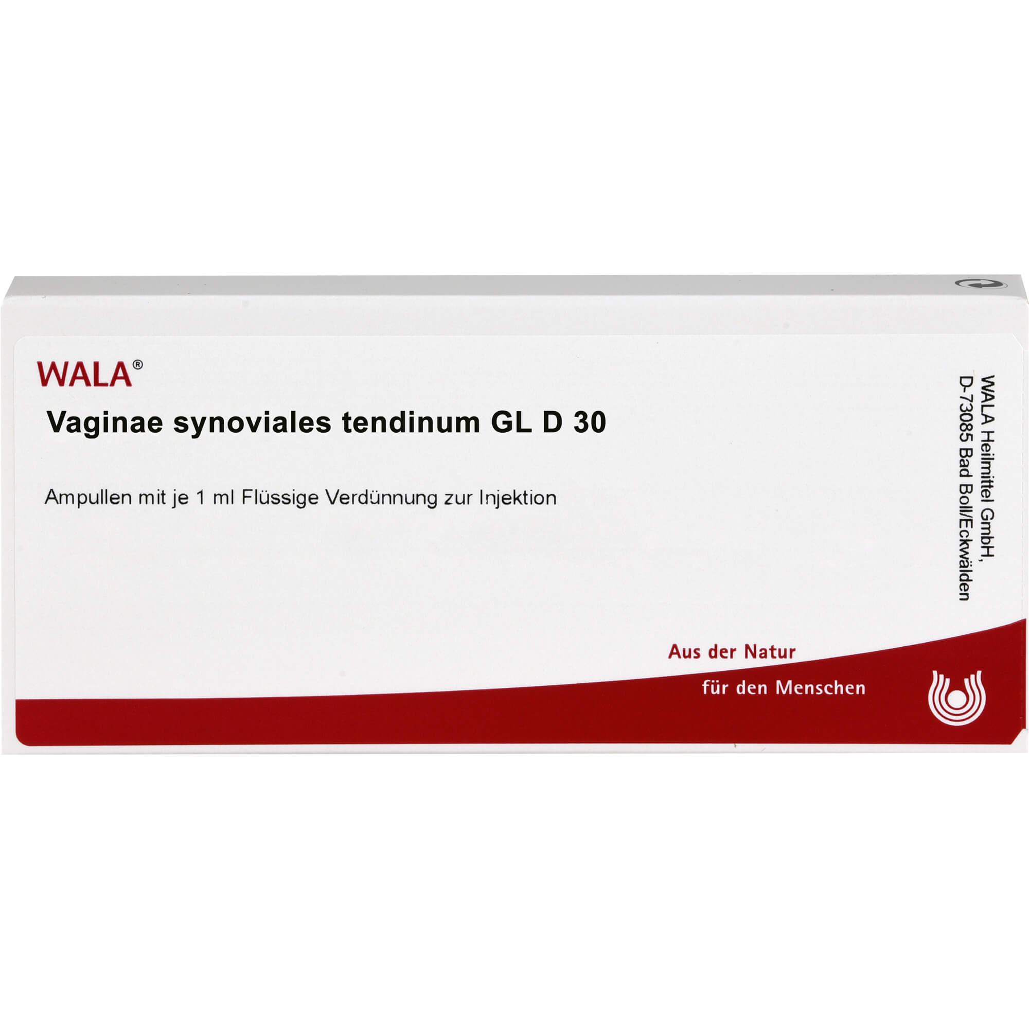 VAGINAE synoviales tendinum GL D 30 Ampullen