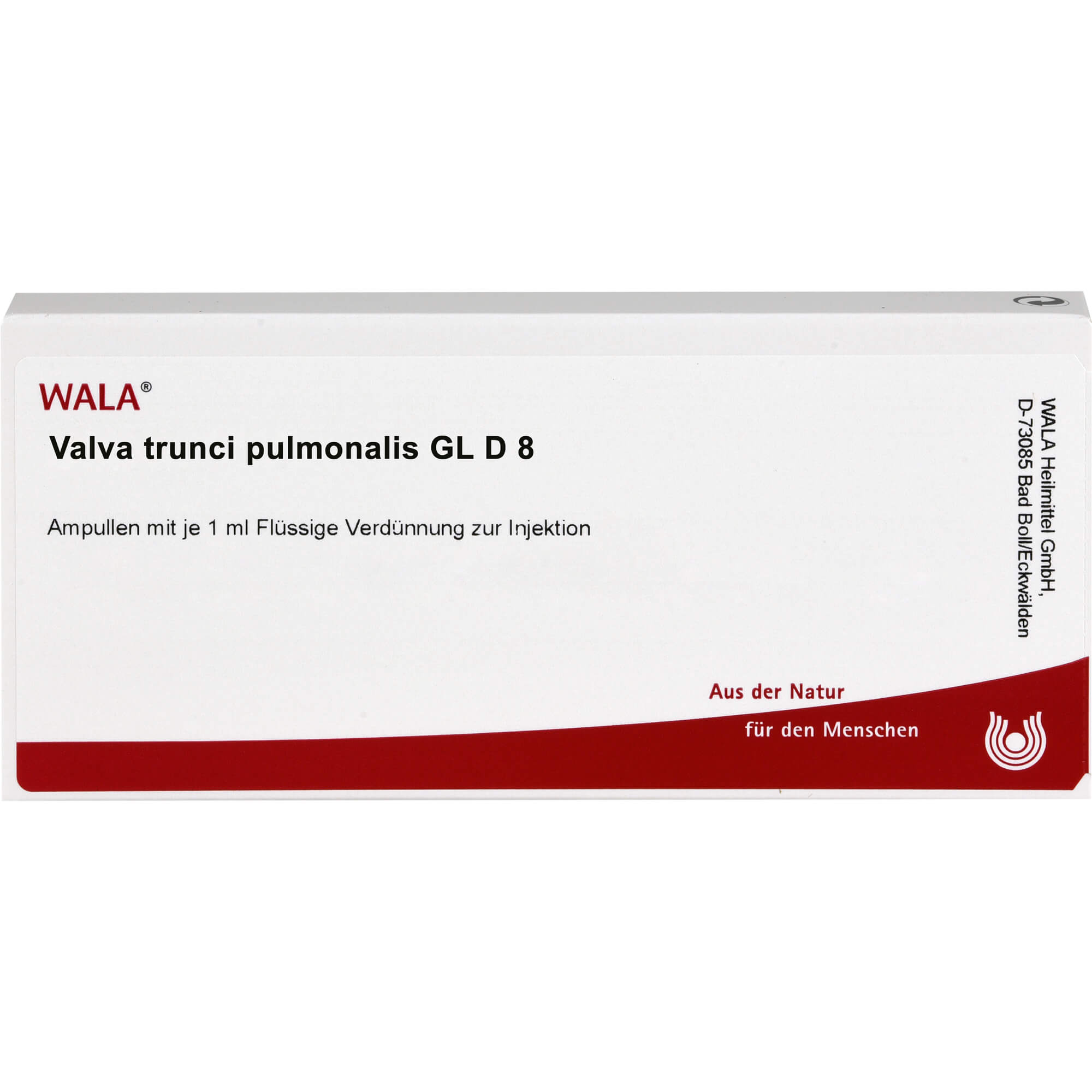 VALVA trunci pulmonalis GL D 8 Ampullen