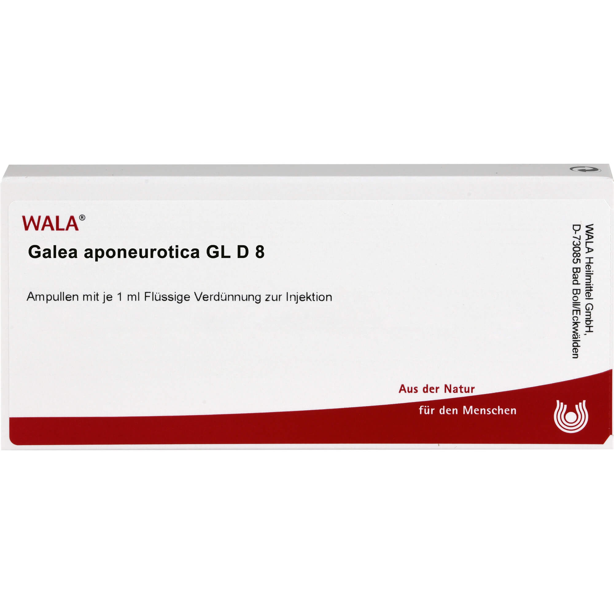 GALEA aponeurotica GL D 8 Ampullen