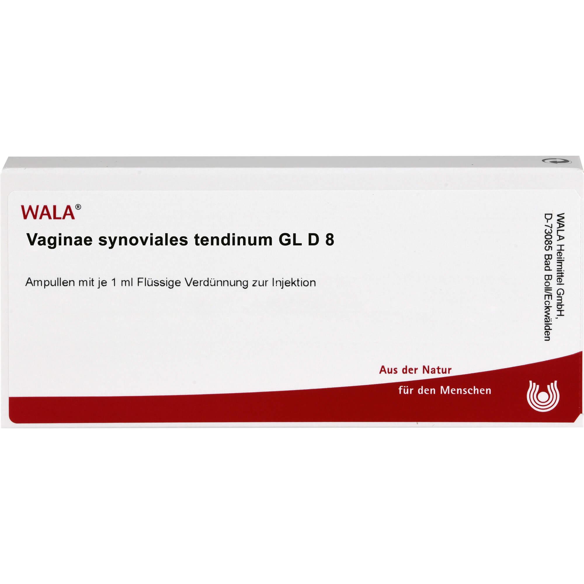 VAGINAE synoviales tendinum GL D 8 Ampullen