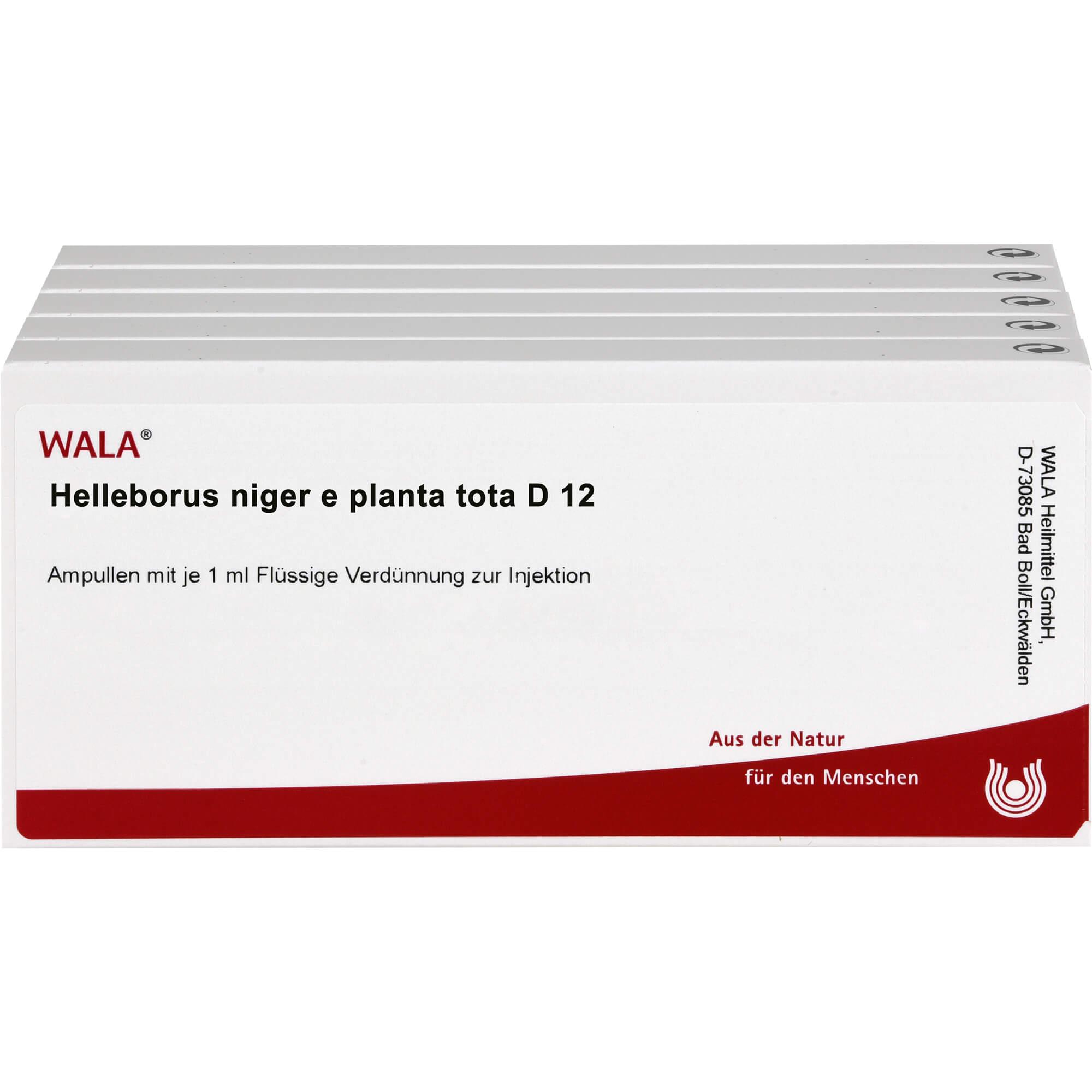 HELLEBORUS NIGER e planta tota D 12 Ampullen
